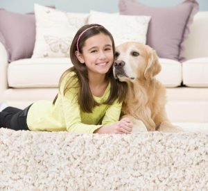 Read more about the article UPHOLSTERY CLEANING TIPS