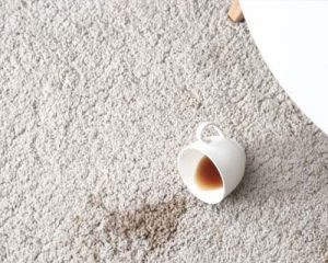 Read more about the article Emergency Tips for Spills and Stains